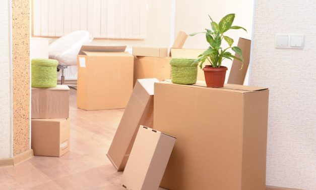 How To Protect Yourself During a Move