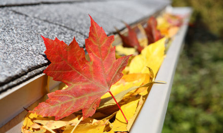 10 Fall Home Improvement Tips